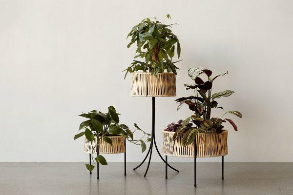Menu – Pflanzenständer Umanoff