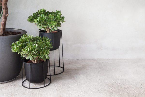 Menu – Pflanzenständer Wire